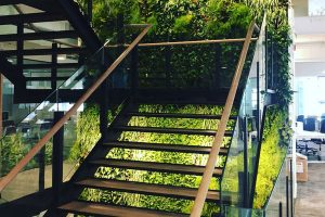 executive-headquarters-building-dubai-green-wall-indoor