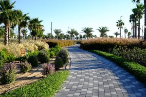 gated-community-desert-turfcare