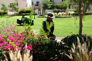 gated-community-maintenance-desert-turfcare