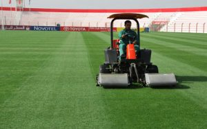 turf-maintenance-al-ahli-club-dtc