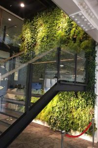 executive-headquarters-building-dubai-green-wall